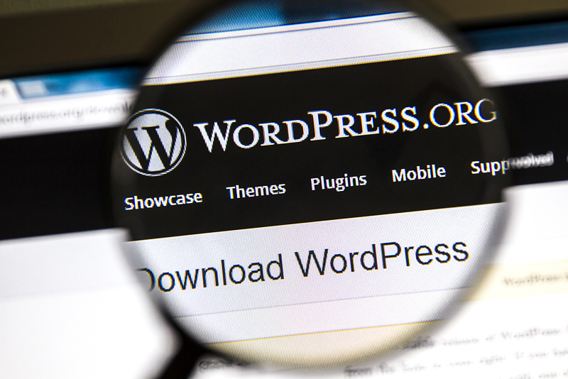 How To Start A WordPress Blog In 5 Minutes? Step-By-Step Guide
