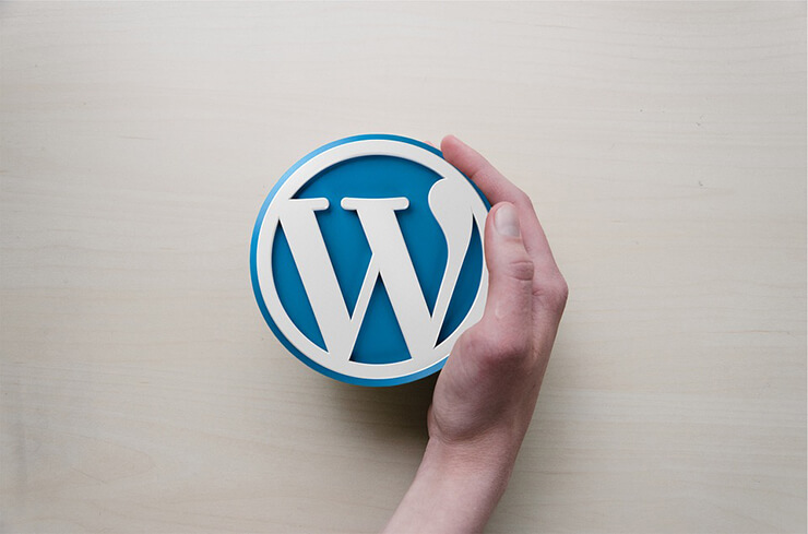 5 Steps to Become a WordPress Expert